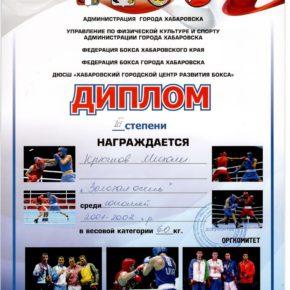 бокссссс Журавлев (2)