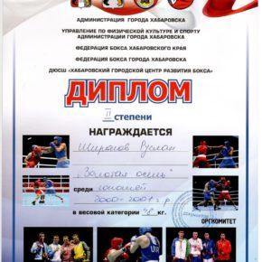 бокссссс Журавлев (6)
