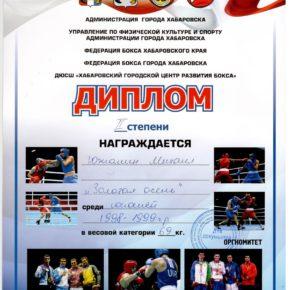 бокссссс Журавлев (7)