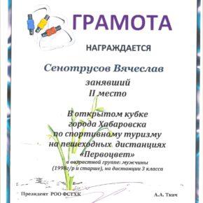 вым 011