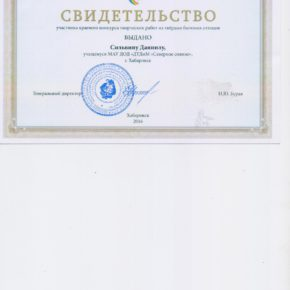 силь001 (2)